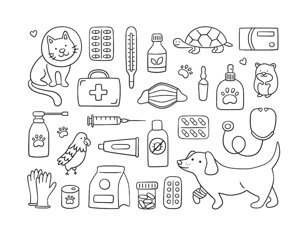 Veterinary set with pets, medicines and food. a cat in a collar and a dog with a bandaged paw.