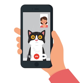 Video call with cat / pet