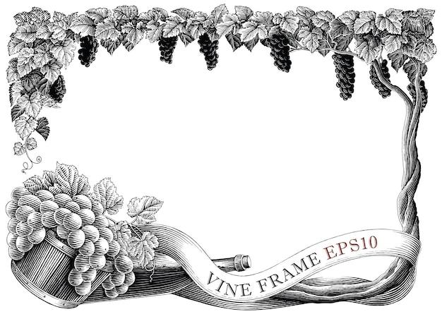 Виноградная рамка рука рисовать старинные гравюры стиль черно-белые картинки, изолированные на белом фоне