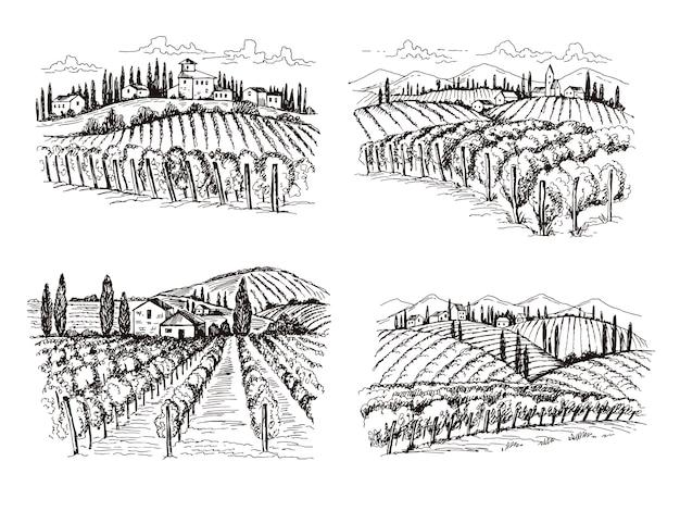 ぶどう畑。古いフランスシャトーワイン風景手描きイラストデザインのラベルのプロジェクト