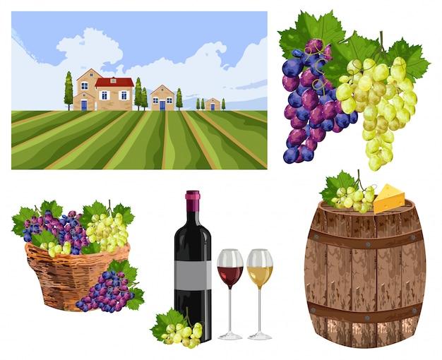 Vineyard set collection landscape