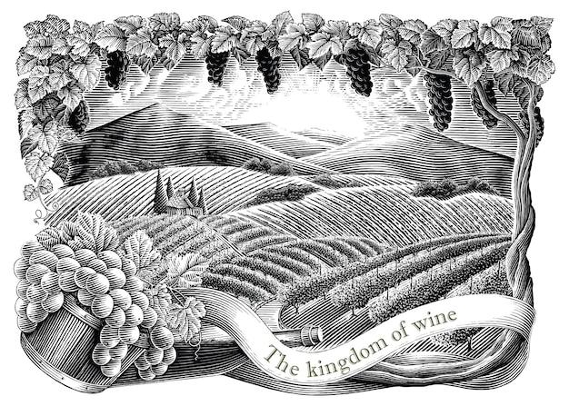 Виноградник с рамкой рука рисовать старинные гравюры стиль черно-белые картинки, изолированные на белом фоне