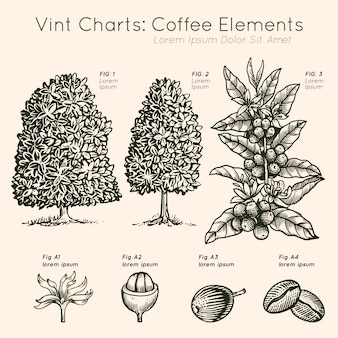 Vint charts coffee elements tree hand drawn