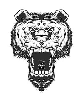 Vintage angry tiger head in monochrome style isolated vector illustration concept