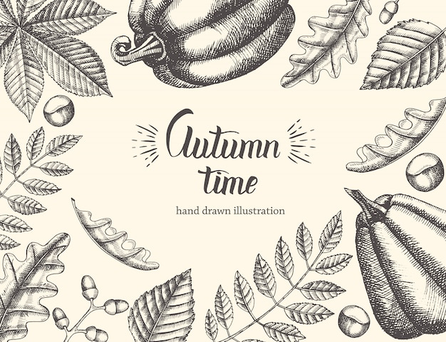 Vintage autumn background with hand drawn leaves and pumpkin. hand written trendy quote autumn time