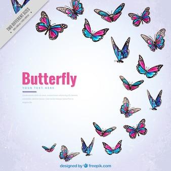 Vintage sfondo di farfalle colorate