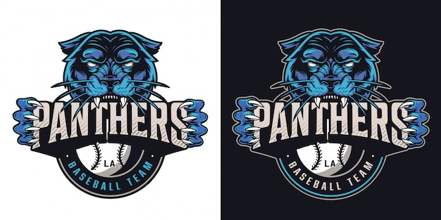 Винтаж бейсбольный спортивный клуб логотип