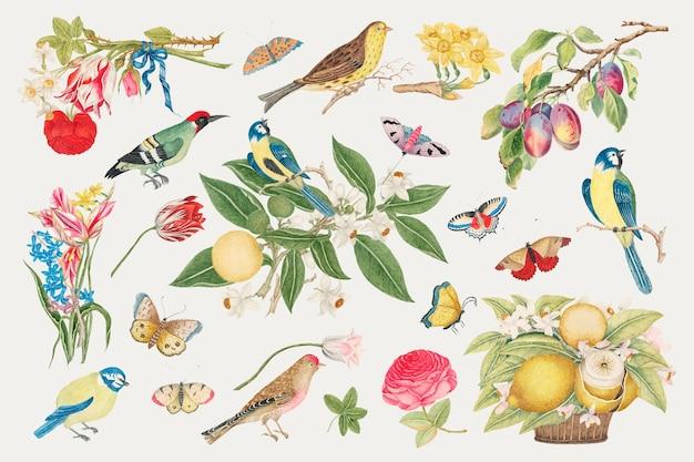 スミソニアンアーカイブの18世紀のアートワークからリミックスされたヴィンテージの鳥と花のイラスト。