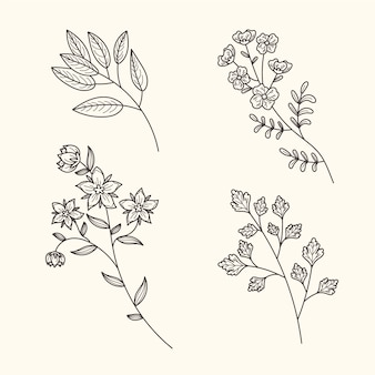 Vintage botanic herbs and flowers