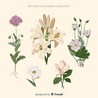 빈티지 식물 꽃 모음