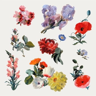 Vintage botanical flower vector set painting, remixed from artworks by jacques-laurent agasse