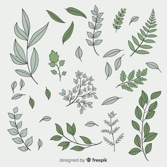 Vintage botanical leaf collection
