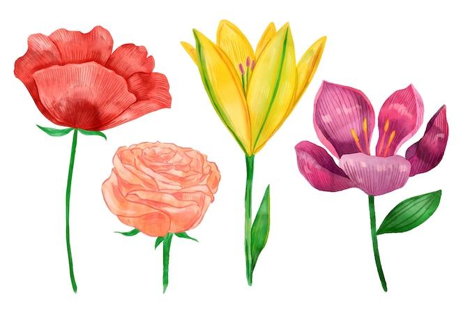 빈티지 식물학 꽃 모음