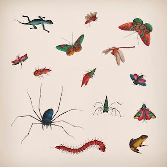 Набор старинных бабочек и насекомых иллюстраций