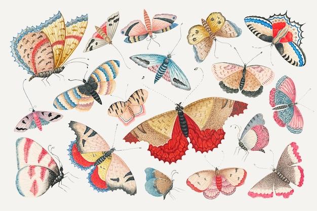 스미소니언 아카이브의 18세기 작품을 리믹스한 빈티지 나비와 나방 수채화 그림 세트.