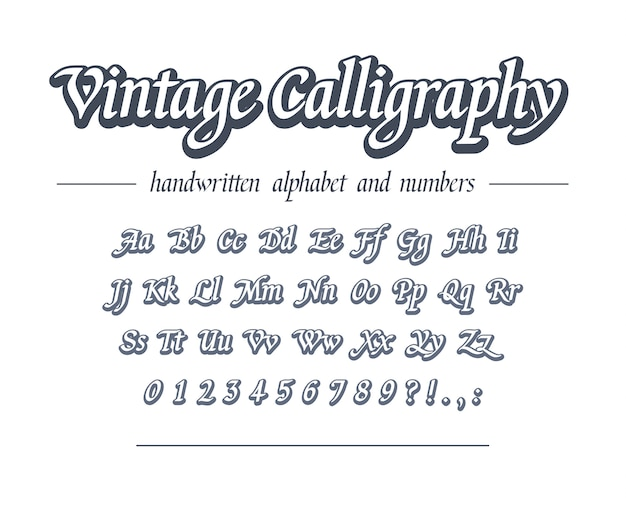빈티지 서예. 손으로 그린 개요 알파벳입니다. 비즈니스 로고 디자인, 패키지, 배너 제목에 대한 범용 필기 글꼴. 레트로 스타일의 클래식 스크립트.