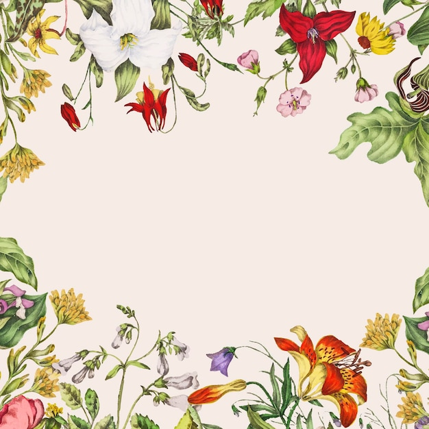 Vintage canadian wild flowers frame vector