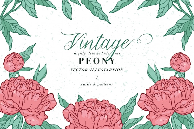 Vintage card with peony flowers. floral wreath. flower frame for flowershop with label designs. summer floral rose greeting card. flowers background for cosmetics packaging.