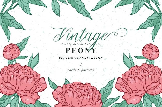 牡丹の花を持つヴィンテージのカード。フローラルリース。ラベルデザインのフラワーショップのフラワーフレーム。夏の花のバラのグリーティングカード。化粧品包装の花の背景。