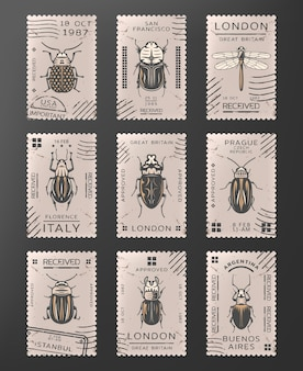 Vintage colored insects stamps set with dragonfly different types of bugs and beetles isolated
