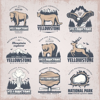 Vintage colored national park emblems set with rare wild animals nature landscapes geyser plank grand prismatic spring isolated