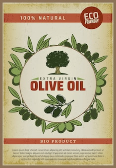 Vintage colored organic natural food poster with inscriptions olive tree and branches