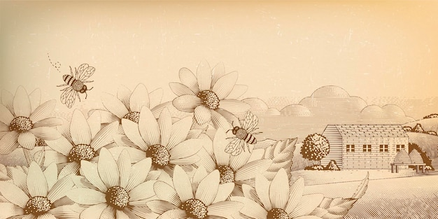 Старинные сельские пейзажи в стиле гравюры, полевые цветы и пчелы