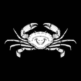 Vintage crab drawing. hand drawn monochrome seafood illustration.