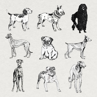 Vettore di adesivi per cani vintage in set di illustrazioni in bianco e nero, remixati da opere d'arte di moriz jung