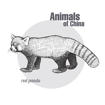 レッサーパンダのビンテージ彫刻。