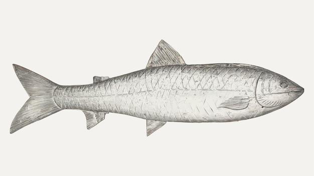 Винтажная векторная иллюстрация рыбы, ремикс из работы генри мерфи