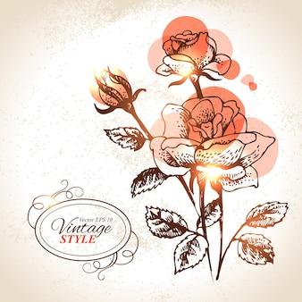 ヴィンテージの花の背景。バラの手描きイラスト