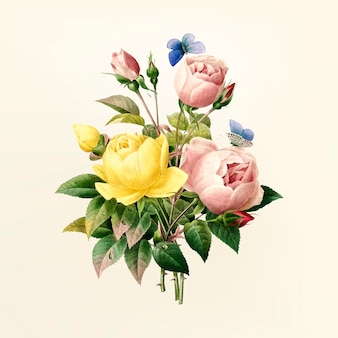 Vintage flower illustration