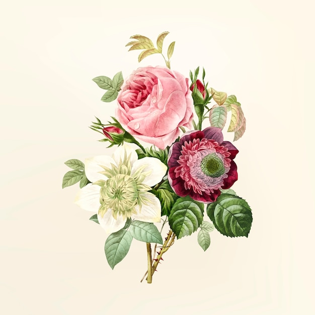 illustration flower - Madran kaptanband co