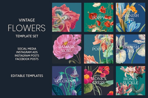 Vintage flower vector template set, remixed from public domain artworks