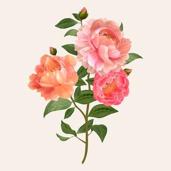 빈티지 꽃 꽃다발 벡터