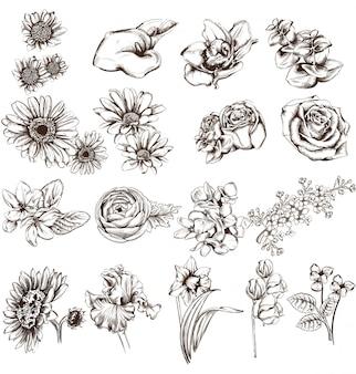 Vintage flowers line art collection