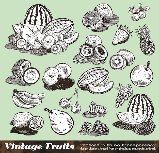 Vintage fruits collection