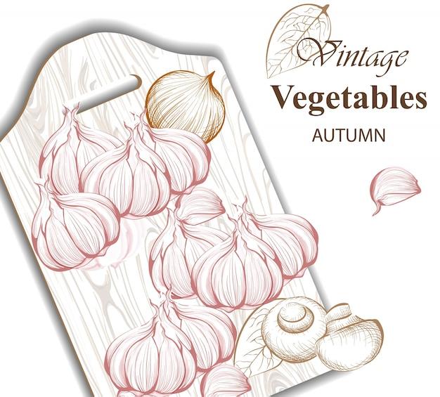 Vintage garlic background
