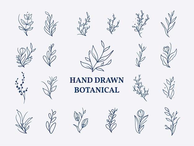 빈티지 손으로 그린 꽃 그림 세트