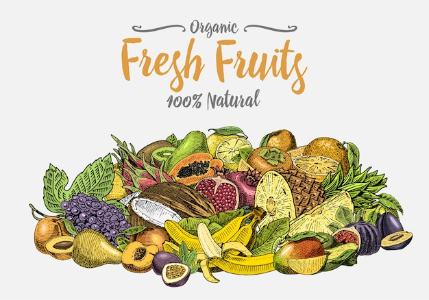 Винтаж, рисованной свежие фрукты фон, летние растения, вегетарианские и органические цитрусовые и другие, гравировка. ананас, лимон, папайя, питайя, маракуйя и бананы.
