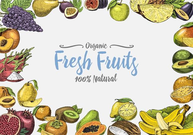 Vintage, hand drawn fresh fruits background, summer plants, vegetarian and organic citrus and other, engraved. pineapple, lemon, papaya, pitaya, maracuya and bananas.
