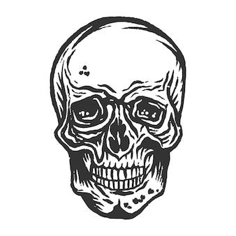 빈티지 손으로 그린 인간의 두개골