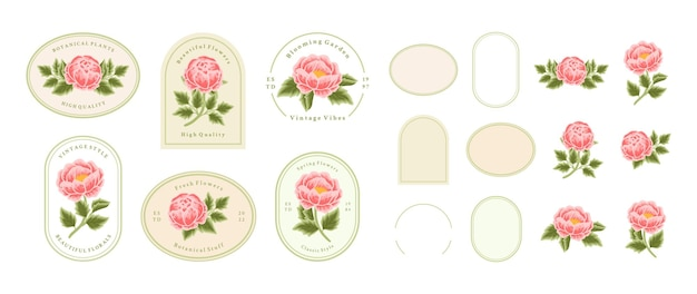 Vintage hand drawn peach peony flower logo element collection