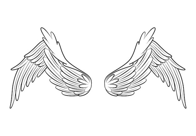 빈티지 전 령 날개 스케치. 흑백 양식에 일치시키는 새 날개. 손으로 열린 위치에서 윤곽이 잡힌 스티커 날개를 그렸습니다. 색상 스타일의 디자인 요소.