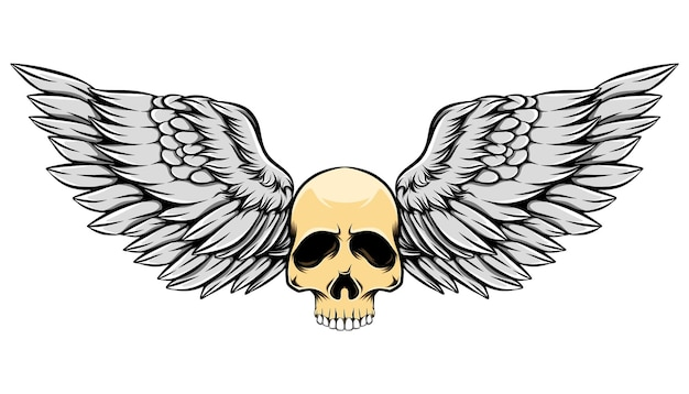 Vintage illustration old dead skull with colored wings