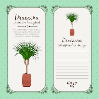 Vintage label with dracaena plant