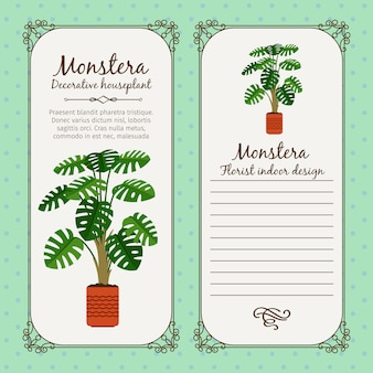 Vintage label with monstera plant