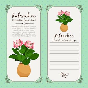 Vintage label with potted flower kalanchoe