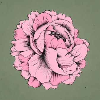 빈티지 올드 스쿨 플래시 장미 문신 디자인 기호